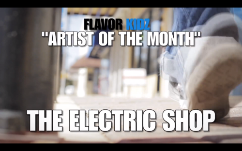 The Electric Shop Artist of the Month